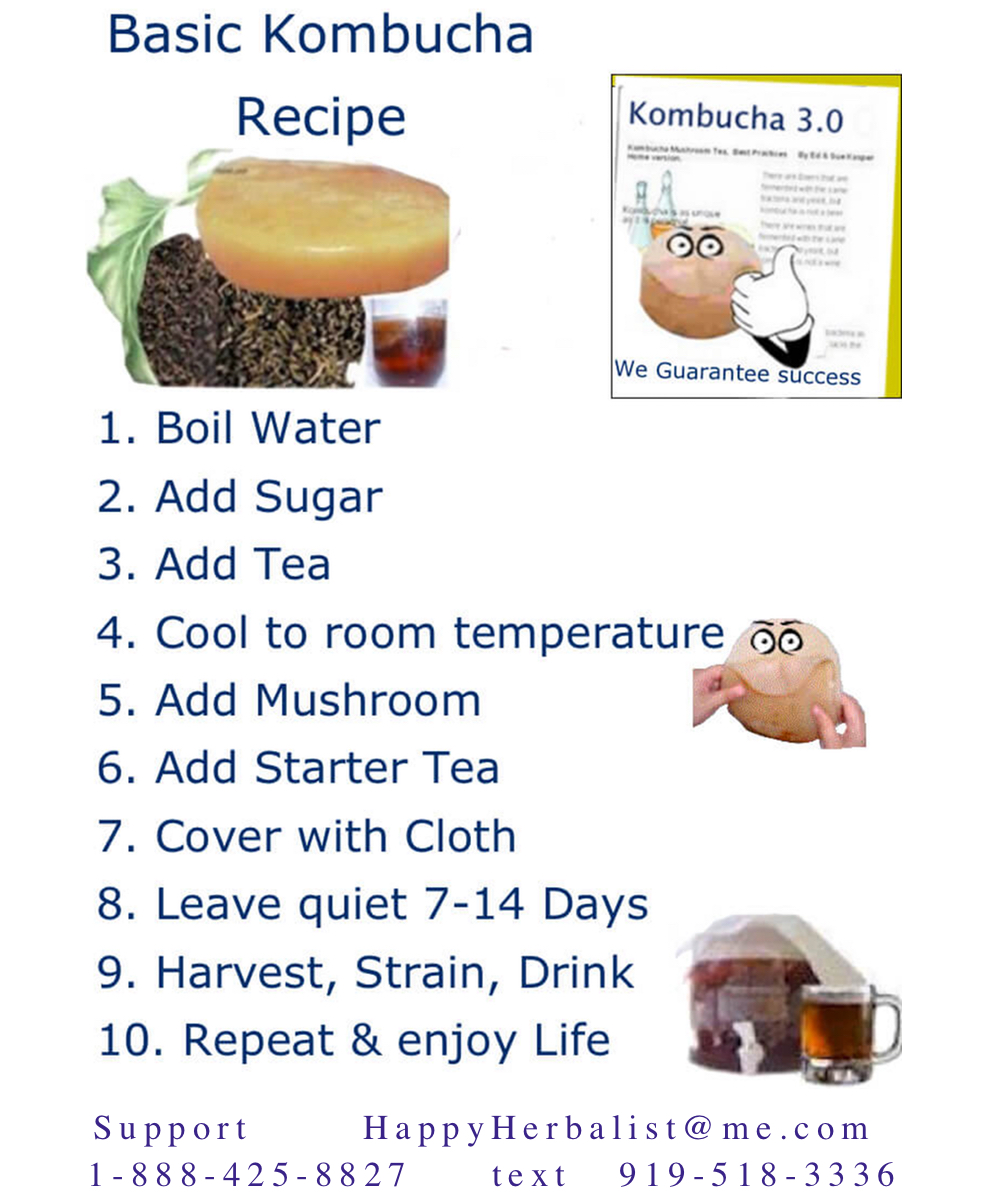 basic-kombucha-recipe-by-happyherbalist.com.jpg