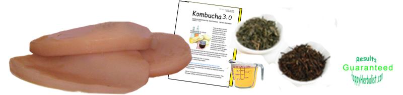 kombucha-starter-kit-simple-and-easy-.jpg